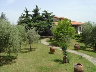 Arezzo villa 19 vani 650 Mq