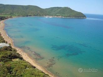 Bilo in Colonica 2 km da BARATTI Costa Etruschi 5