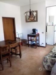 Appartamento ampio Bettolle piano T garage doppio