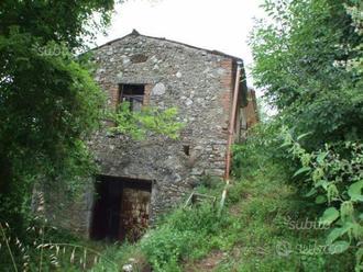 Torricella in Sabina:casale con terreno privato