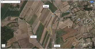 Terreno agricolo loc. Codacchio Anagni Ferentino