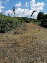 Terreno agricolo vicino Paliano - Contrada Verano
