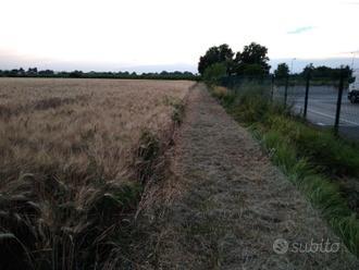 Terreno edificabile (imola)
