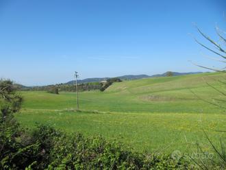 Terreno agricolo 10,35 ettari