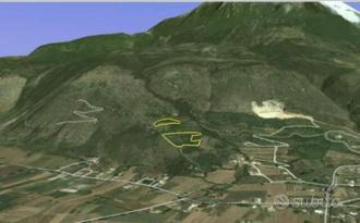 Terreno agricolo zona collinare: Uliveto + bosco