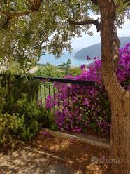 Villino buganvillea con vista golfo di Noli