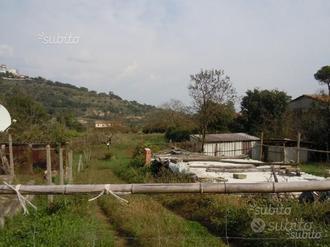 Terreno nel comune di Segni (RM)