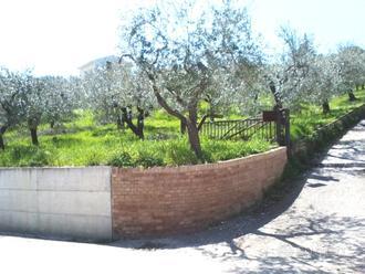 Terreno edificabile a Colle Marcone