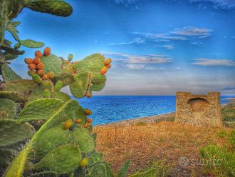 Casa vacanza Cirò Marina