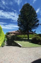 Villa con piscina Ispra