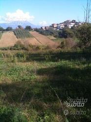 Terreni Agricoli S. Giovanni Incarico