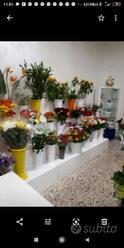 Attività commercio di fiori e piante