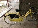 Bicicletta gialla canna bassa 26 pollici
