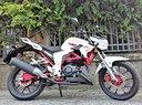 New Senke SK125 Naked bianco