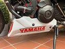 Puntale ermax Yamaha mt09 xsr900 tracer900