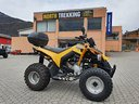 Quad Can Am DS 250