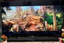 SONY BRAVIA 50 pollici, 3D, LED,ULTRA HD