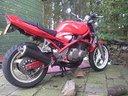 ovale-carbon-roadsitalia-suzuki-gsf-bandit-400