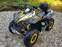 Can am Renegade 800r xxc