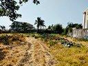 terreno-agricolo-recintato