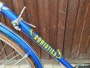 Bicicletta vintage sportiva