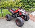 nuovo-quad-monster-125-superwell-r8-portapacchi