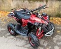 new-mini-quad-50cc-lion-r6
