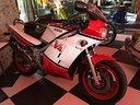Rd 500 Yamaha 1984 conservata scarici