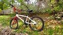 BMX Carraro