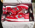 Nike Dunk Low Off White University Red US9 DSWT