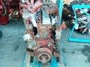 motore-usato-iveco-aifo