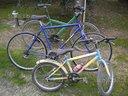 Bicicletta biciclette 5 bici 100