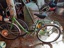 Biciclette da donna