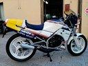 Honda NSR 125 - 1986
