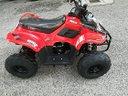Mini quad 110 cc 4 tempi con retromarcia nuovo