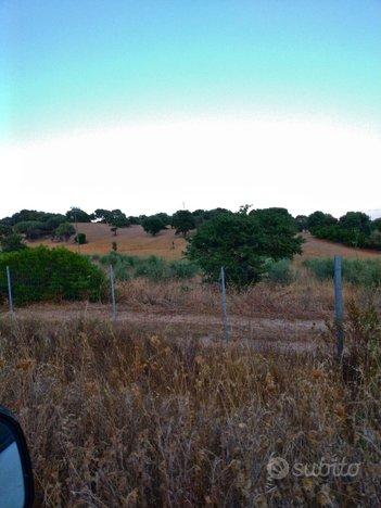 Appezzamenti zona Monte Pinu
