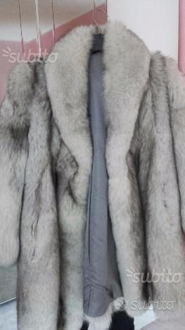 Eccellente pelliccia di volpe della Groendia