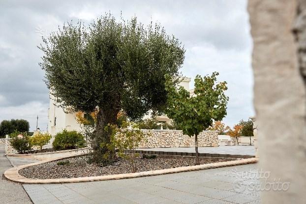Villetta a due passi dal mare di Torre Canne