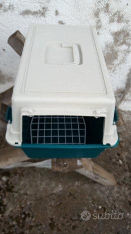 Lettiera e trasportino per gatto