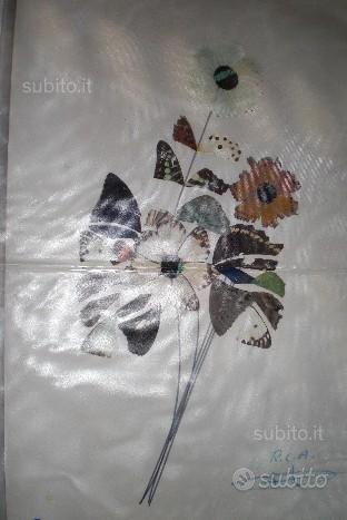 Quadro di petali di farfalle