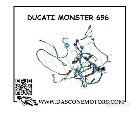 Cablaggio Monster 696