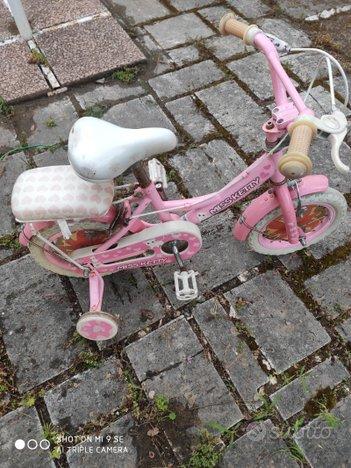 Bicicletta bambina con rotelle bici bimba