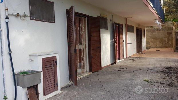 Appartamento Agnone C.to cod. 01-182