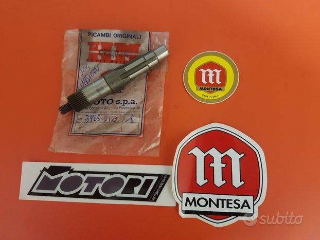 Alberino m.moto Montesa 304-310 Evasion