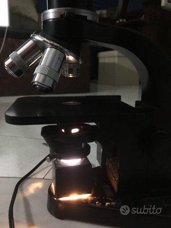 Microscopio ottico Hernst Leitz Wetzlar