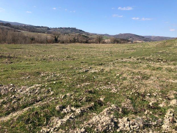 Terreno agricolo 5 ettari vicino Orvieto