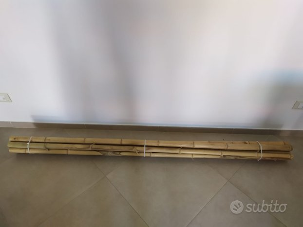 Canne Bamboo gigante