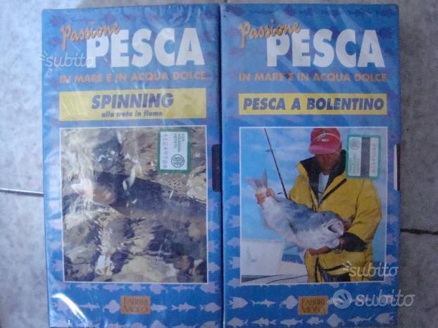 Pesca Mare e Acqua Dolce - Bollentino - Spinning