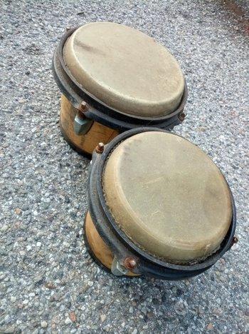 Bongo jambè professionali percussioni