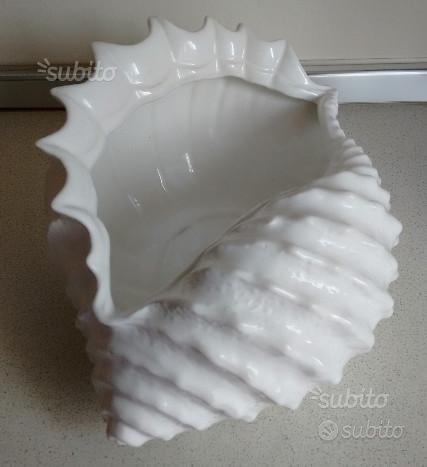 Conchiglia bianca Ceramica Bassano del Grappa ...